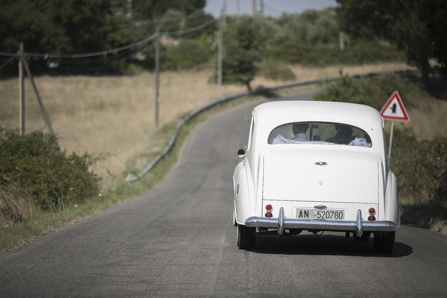 фотограф-свадебный-38
